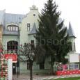 dom na Skuteckého ulici č. 14 (pôvodný majiteľ domu bol zubár Dr. Karol Weisz)