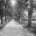 mestský park okolo roku 1925
