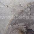 stopy po odstránenní sekundárne domurovanej priečky