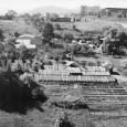 záhradníctvo na Hurbanovej ulici za mestským parkom (rok 1986)