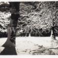 Zimná idyla v Mestskom parku (30-te roky minulého storčia).