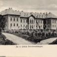rok 1905